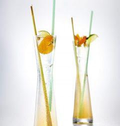 Apricot & Tonic